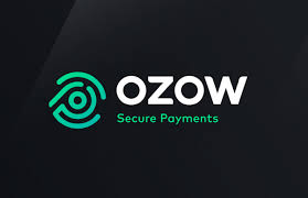 Safe Secure Payments with OZOW